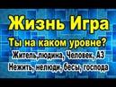 Сергей Сенаторов Ты в игре уровни развития и сложности Жизнь игра