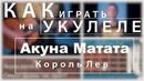 Как играть на укулеле Акуна матата — Тимон и Пумба | Король Лев | DVKmusic cover 4k