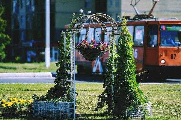 На автомобильном кольце в городе появилась цветочная надпись «Нижнекамск»
