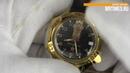 Восток Командирские 539792. Обзор часов от