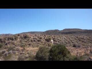 Жёлтые Крылья Андалусии - Путешествия по Испании