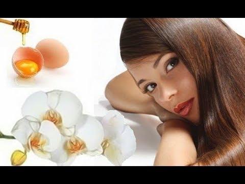 Как сделать яичный шампунь для волос