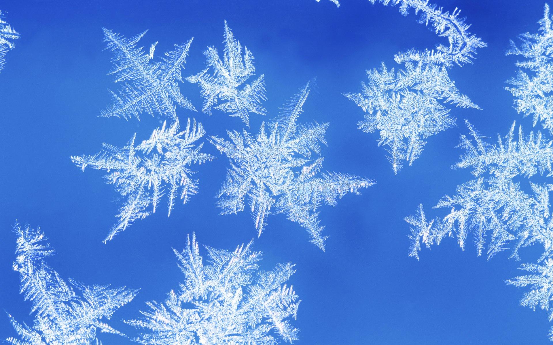 … для того, чтоб понять по-настоящему, что есть та или иная страна или то или иное место, туда надо ехать зимой, конечно.