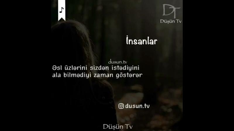 - İnsanlar_fallen_leaf_ ( 750 X 750 ).mp4