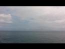 Дельфины! Ялта 2018 год! Морская прогулка до Ласточкиного гнезда!