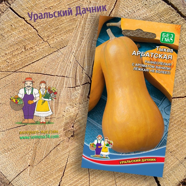 тыква арбатская высокоурожайный, раннеспелый сорт. плоды грушевидные, массой до 4 кг, кремового цвета. мякоть очень сладкая, ярко-оранжевого цвета, плотная и хрустящая, с ванильным ароматом, по