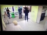 Кража Айфона в поликлинике N5. 26.07.18