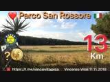 11.11.2018 Corsa di 13 Km, Parco di San Rossore, Pisa, Italia, Vincenzo Vitali