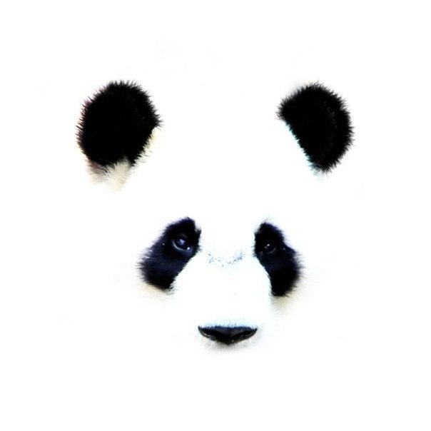 Кафе у панды