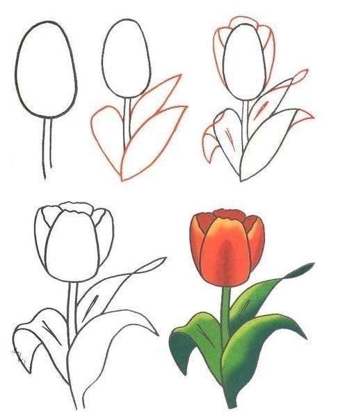 3 цветка пошагово