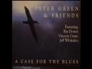 Peter Green Friends (KATMANDU) - Boogie All The Way@1984