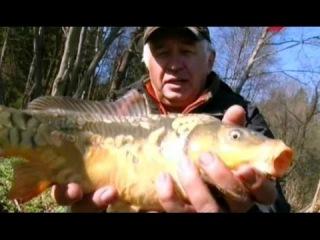 Мой мир рыбалка с Владимиром Струевым