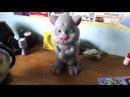 """Китайская игрушка. Говорящий кот правильно реагирует, отрицательно, на лозунг """"Слава Украине!"""