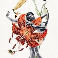 Dance studies: диалог без слов