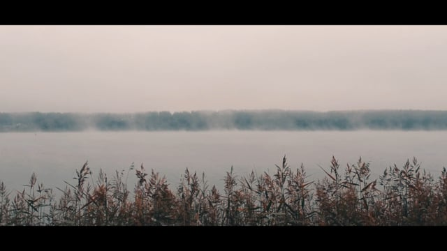 Terror Mist / Солнечногорский туман 2018 / DJI Spark