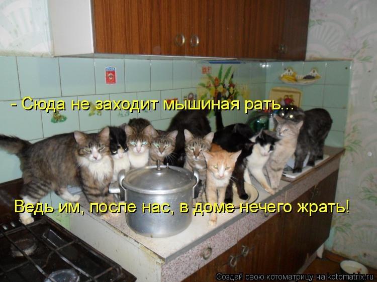 http://cs402630.userapi.com/v402630049/3e18/NnXDoRwyNtc.jpg