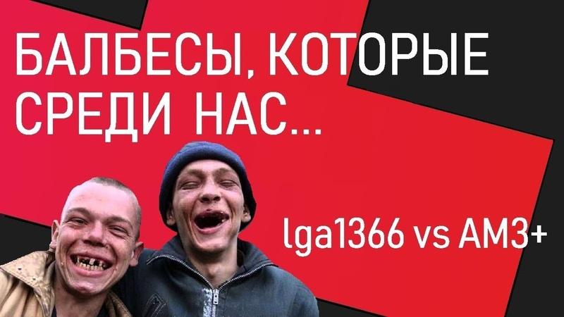Балбесы, которые среди нас... lga1366 vs AM3