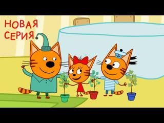"""Новая серия три кота 123 """"деревья"""""""