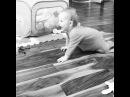 Сыновья Дарьи и Сергея Пынзарь играют в догонялки в квартире