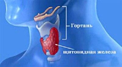 диетолог уфа врач