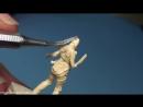 Miniature Mentor 14 - Miniature Sculpting With Aragorn Marks. Part 2