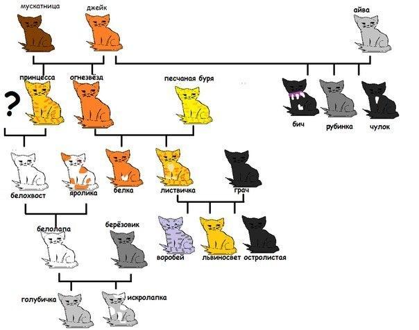 Коты воители все персонажи по именам