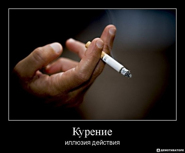 essay about smoking kills Smoking effects essay examples & outline are you in high school smoking kills at a very high rate, and it is the time it has ban in dubai is made a reality.