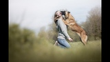 Daïka, Malinois Dog Tricks [3 Years]