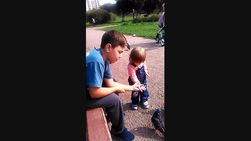 Ванечка с девочкой кормят голубей в парке.