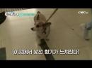 Sub Esp ParkJungMin _ Great Gatsby - Episodio 1_5 박정민 online-video-cutter 5