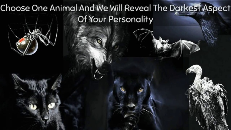 Choose One Animal And We Will Reveal The Darkest Aspect Of Your Personality XOXO - YouTube TV
