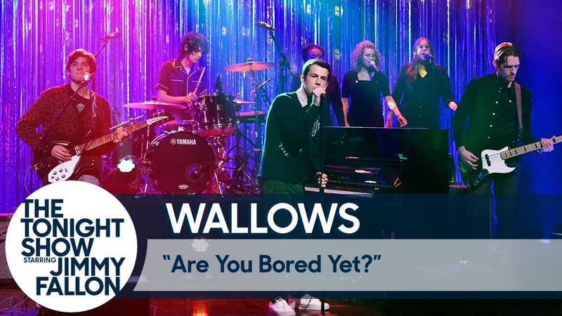 Wallows Are You Bored Yet