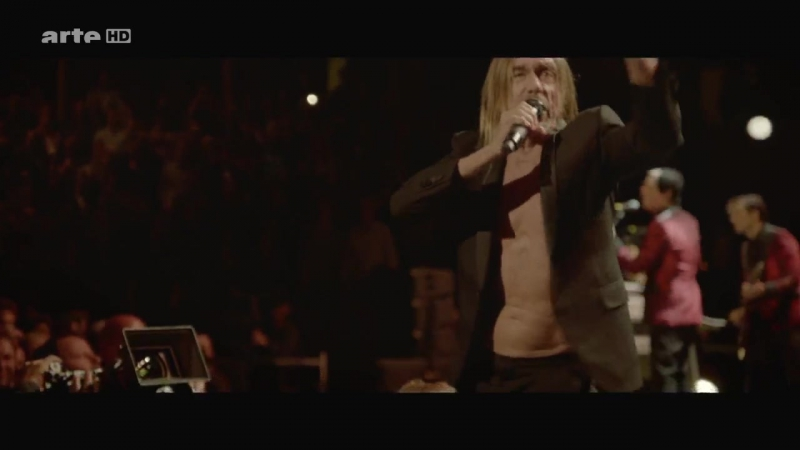 Iggy Pop Lust For Life Live