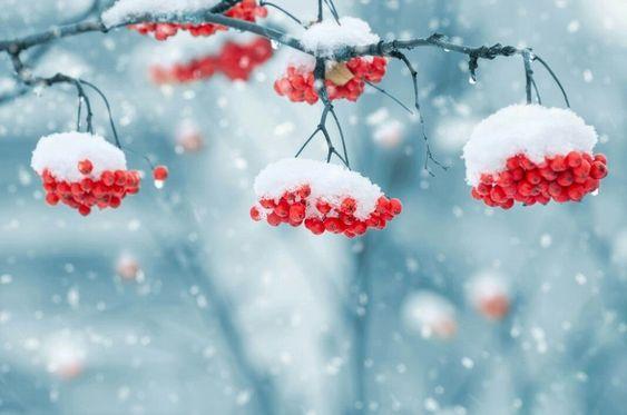 Магия Февраля 2019:Полезные советы и обряды на каждый день месяца
