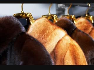 В Курском цирке развернули ярмарку мехов