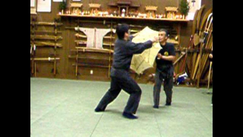 Bujinkan Noguchi Sensei umbrella fight