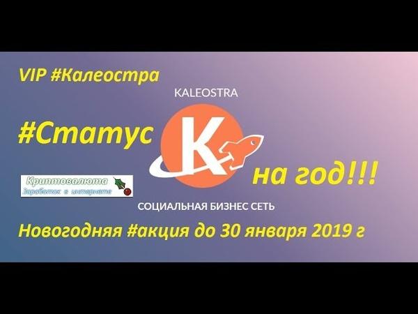 VIP Калеостра Cтатус на год. Новогодняя акция до 30 января 2019 г
