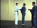 Урок дзюдо: методика бросков и приемов (онлайн видео) [uroki-online.com]