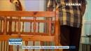 Мать-беглянка и любовник с заначки (полный выпуск)   Говорить Україна