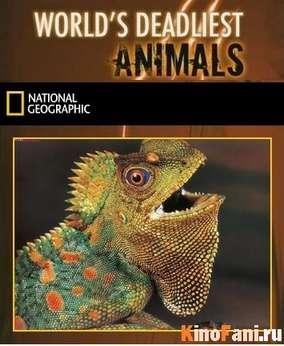 Самые опасные животные мира / Worlds Deadliest Animals