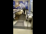 Дед-атлет в Петербурге