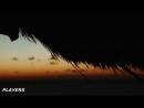KIBA - My Love For You (Original Mix)