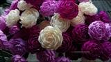 Hướng dẫn làm hoa hồng xoắn giấy | How to make roses paper flowers