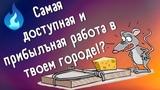 Отзыв о работе в ПрофГазБезопасность, Продавец Газоанализаторов, Осторожно мошенники, Лжегазовики