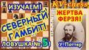 Жертва ФЕРЗЯ! ♕ Северный гамбит ❄️⛄️ ♔ Шахматы и Шахматные ЛОВУШКИ! 🎆