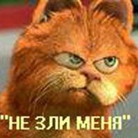 Анастасия Камышова, 6 сентября 1999, Нижний Новгород, id205296643