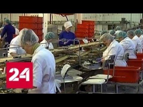 Тот еще шпрот латвийская компания несет убытки от российского эмбарго - Россия 24