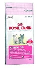 Royal Canine Kitten 36