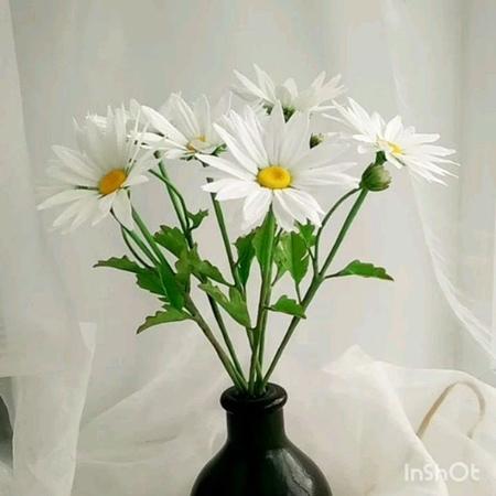 Nika handmade florist video