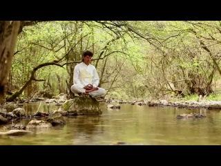 Сергей Синельников художник. Медитация в лесу